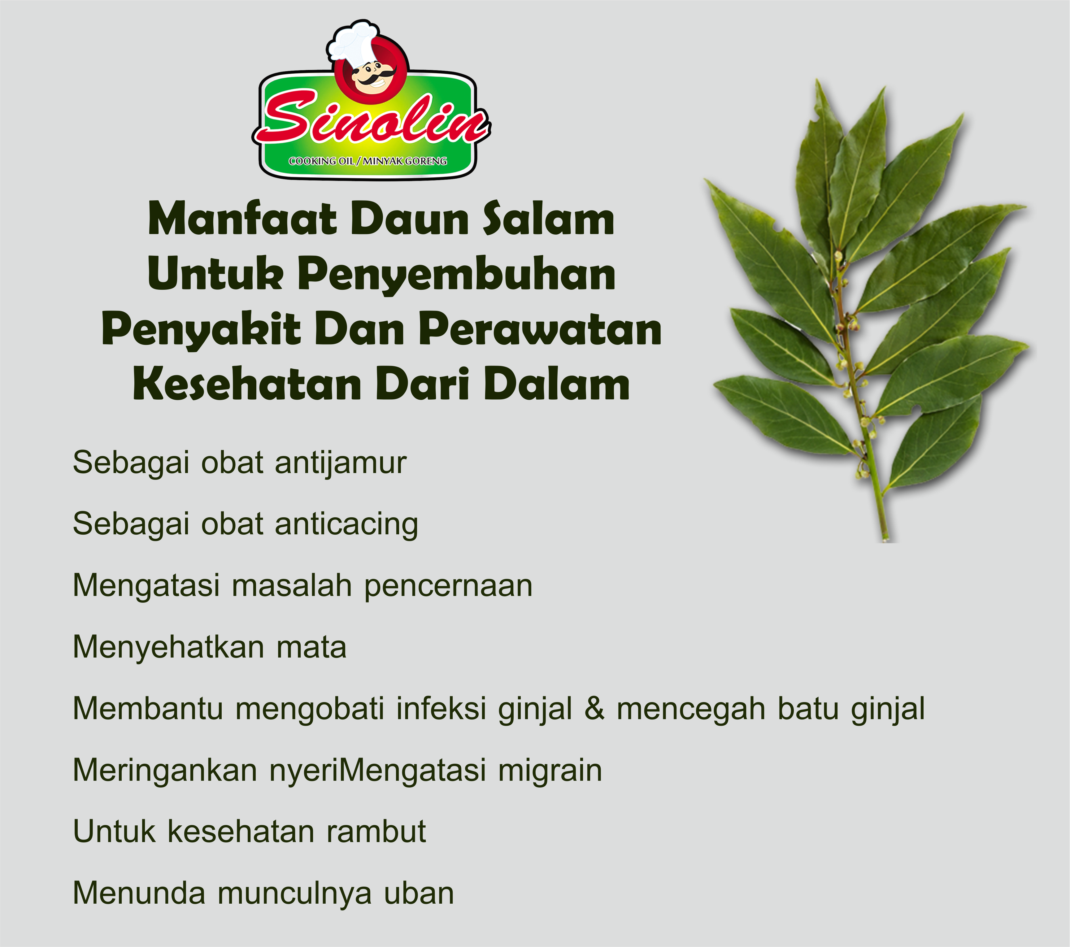 Info: Benefits of Salam Leaves for Healing Diseases and Health Care By Dapur Sinolin