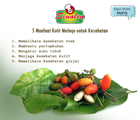 Info: Skin Benefits of Melinjo for Health By Dapur Sinolin