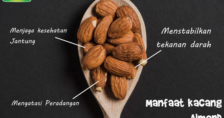 Manfaat kacang Almond untuk Tubuh