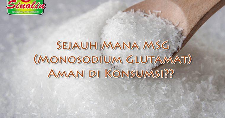 Info: Sejauh Mana MSG (Monosodium Glutamat) Aman di Konsumsi?? Oleh Dapur Sinolin